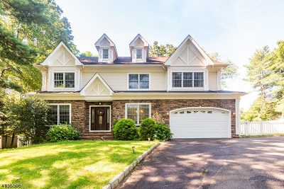 Mountainside Single Family Home For Sale: 181 New Providence Rd