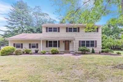 Scotch Plains Twp. Single Family Home For Sale: 3 Herbert Rd