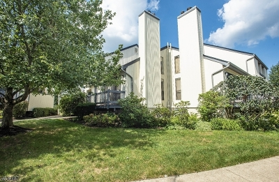 Bernards Twp., Bergenfield Boro Condo/Townhouse For Sale: 189 Locust Ln