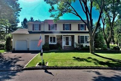 Hillsborough Twp. Single Family Home For Sale: 62 Waymeet Cir