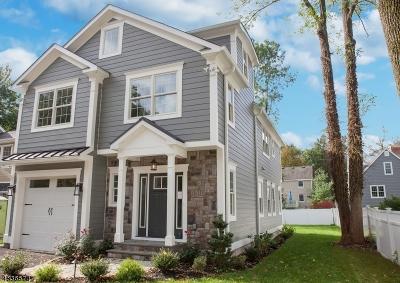 Chatham Boro Single Family Home For Sale: 19 Carmine St
