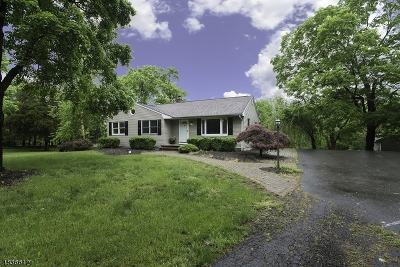 Montgomery Twp. Single Family Home For Sale: 247 Bridgepoint Rd