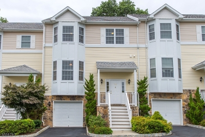Boonton Town Condo/Townhouse For Sale: 706 William St