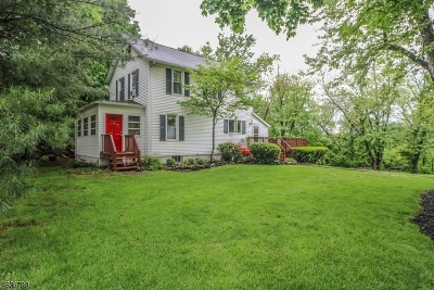 Hillsborough Twp. Single Family Home For Sale: 885 Amwell Rd