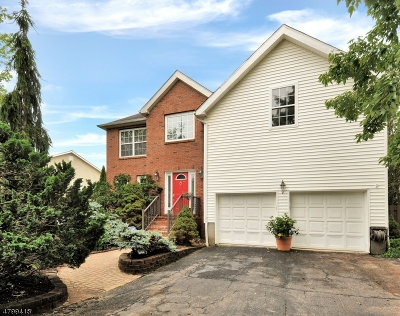 Hillsborough Twp. Single Family Home For Sale: 9 Campbell Rd