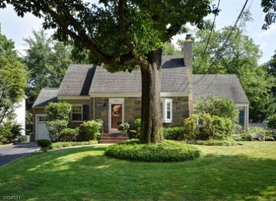 Westfield Town Single Family Home For Sale: 810 Fairacres Ave