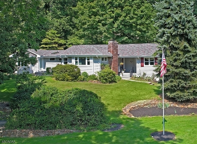 Warren Twp. Single Family Home For Sale: 81 King George Road
