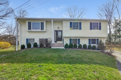 New Providence Single Family Home For Sale: 26 Woodruff Ct