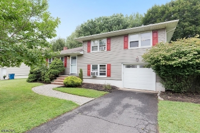Piscataway Twp. Single Family Home For Sale: 22 Maplehurst Ln