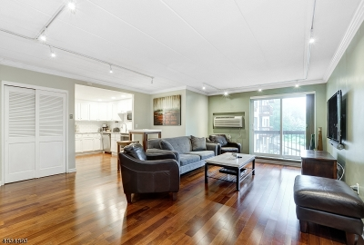 Springfield Condo/Townhouse For Sale: 190 Morris Ave Unit 2h #2h