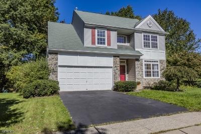 Montgomery Twp. Single Family Home For Sale: 17 Harvard Cir