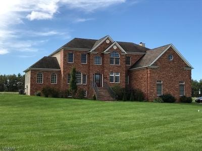 Raritan Twp. Single Family Home For Sale: 221 Everitt Rd