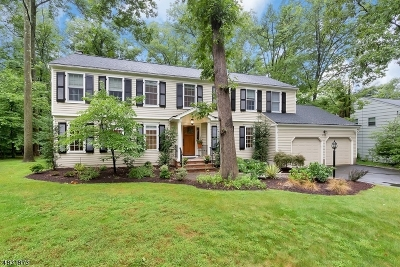 Berkeley Heights Single Family Home For Sale: 222 Lorraine Dr