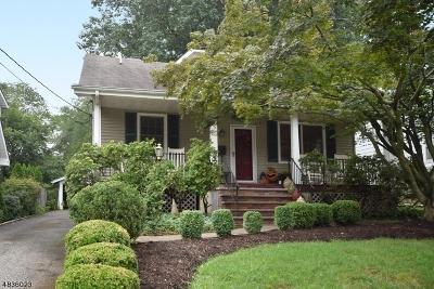 Madison Boro Single Family Home For Sale: 27 Niles Ave