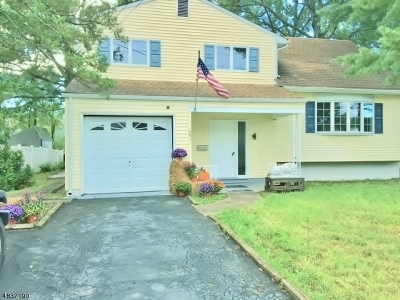 Somerville Boro NJ Single Family Home For Sale: $349,900