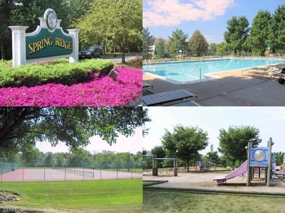 Bedminster Twp., Bridgewater Twp., Bernards Twp., Raritan Boro Rental For Rent: 83 Smithfield Ct