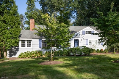 Summit Single Family Home For Sale: 241 Summit Ave