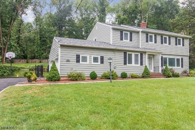 Berkeley Heights Single Family Home For Sale: 58 Sherbrook Dr
