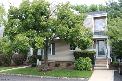 Bedminster Twp., Bridgewater Twp., Bernards Twp., Raritan Boro Rental For Rent: 389 Terrace Ln