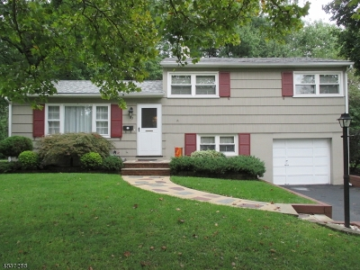 Fanwood Boro Single Family Home For Sale: 83 N Glenwood Rd