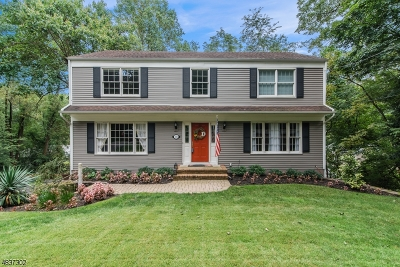 Morristown Town, Morris Twp. Single Family Home For Sale: 176 Western Ave