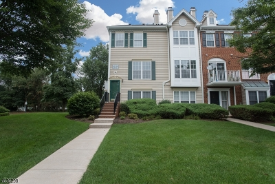 Bridgewater Twp. Condo/Townhouse For Sale: 3601 Riddle Ct #3601