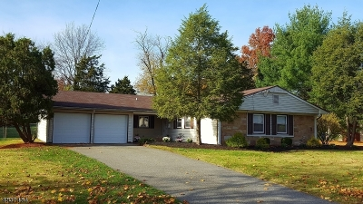 Franklin Twp. NJ Single Family Home For Sale: $419,900