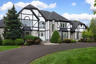 Branchburg Twp. Single Family Home For Sale: 529 Horizon Way