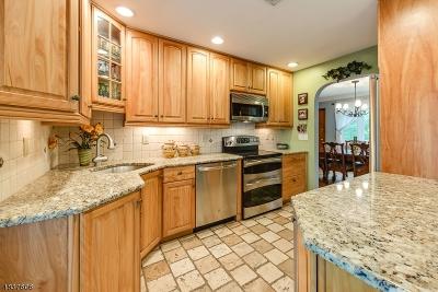 Randolph Twp. Single Family Home For Sale: 250 Center Grove