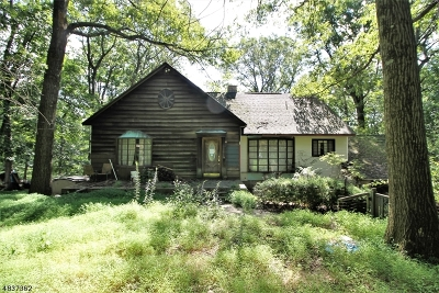 Mount Olive Twp. Single Family Home For Sale: 42 Indian Spring Rd