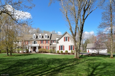 Montgomery Twp. Single Family Home For Sale: 23 Birchwood Dr