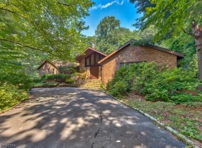 Montvale Boro Single Family Home For Sale: 41 Partridge Run