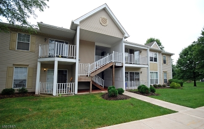 Bridgewater Twp. Condo/Townhouse For Sale: 2709 Lindsley Rd