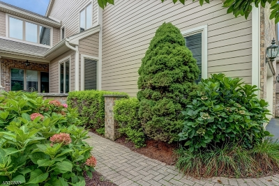 Montville Twp. Condo/Townhouse For Sale: 46 Louis Dr