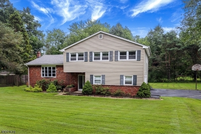 Parsippany-Troy Hills Twp. Single Family Home For Sale: 11 Stafford Ter