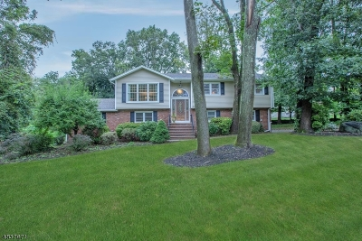 Montville Twp. Single Family Home For Sale: 31 Mary Dr