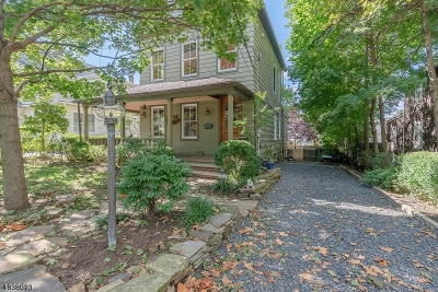 Summit Single Family Home For Sale: 226 Morris Ave