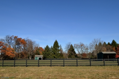 Franklin Twp. Single Family Home For Sale: 452 Cherryville Rd