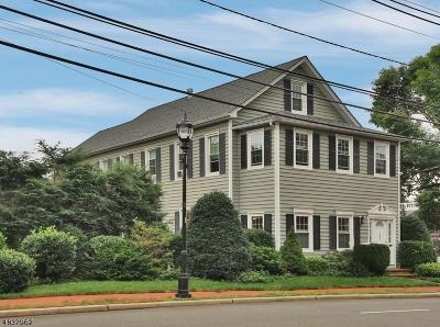 Roseland Boro Single Family Home For Sale: 149 Eagle Rock Ave