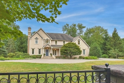 Franklin Lakes Boro Single Family Home For Sale: 157 Pulis Ave