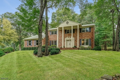 Berkeley Heights Single Family Home For Sale: 205 Spring Ridge Dr