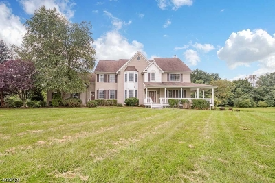 Readington Twp. Single Family Home For Sale: 11 Newell Rd