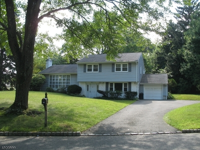 Morris Plains Boro Single Family Home For Sale: 2 Briarcliff Rd