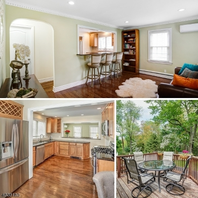 Chatham Twp. Single Family Home For Sale: 20 Cedar Ln