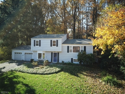 Bernardsville Boro Single Family Home For Sale: 71 Ambar Pl