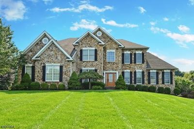Bethlehem Twp., High Bridge Boro Single Family Home For Sale: 215 Garrison Ct