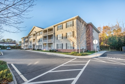 Edison Twp. Condo/Townhouse For Sale: 201 Liddle Ave #201