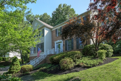 Bedminster Twp. NJ Single Family Home For Sale: $935,000
