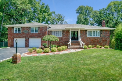 Florham Park Boro Single Family Home For Sale: 6 Myrtle Ave
