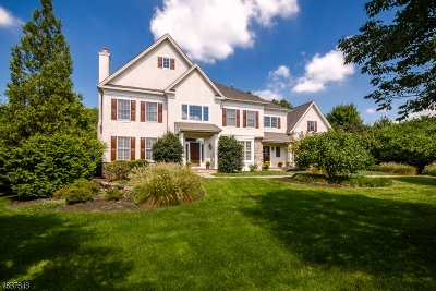 Montgomery Twp. Single Family Home For Sale: 137 Van Zandt Rd